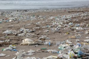Garbage on Beach | Book FHR Travel Blog