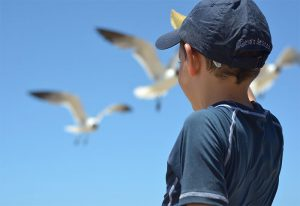 Boy Birds Holiday | Book FHR Travel Blog