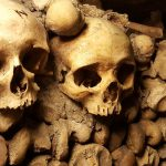 Skulls | Book FHR Travel Blog